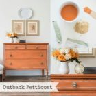 Miss Mustard Seed's Milk paint Outback Petticoat